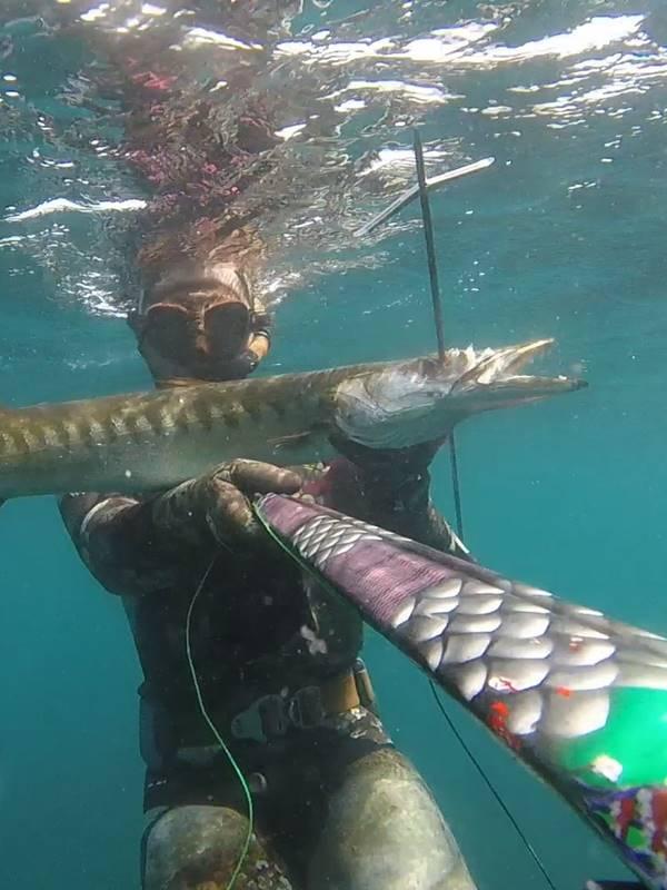 Varillas para fusiles de pesca submarina