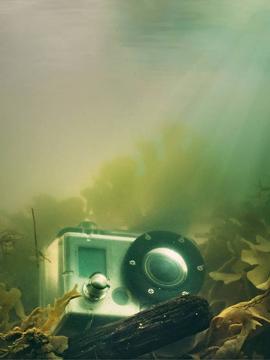Gopro pesca submarina